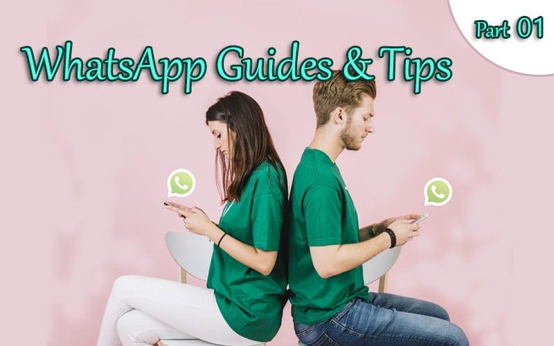 WhatsApp Guides & Tips
