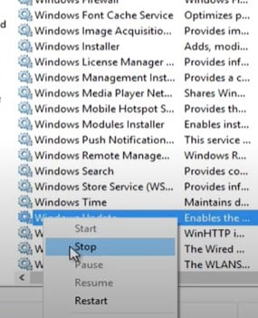 Stop the Windows Update services
