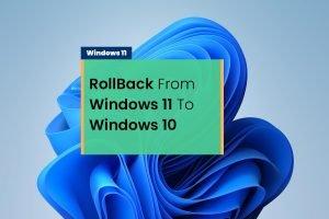rollback windows 11 to windows 10